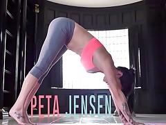Peta Jensen slides her moist pussy down his hard shaft