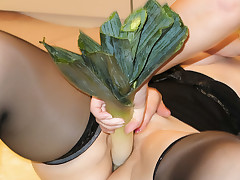 Brunette hair Hair grannies fuck with veggies & give a BJ